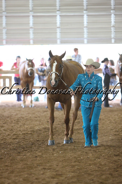Novice Youth & Youth Showmanship