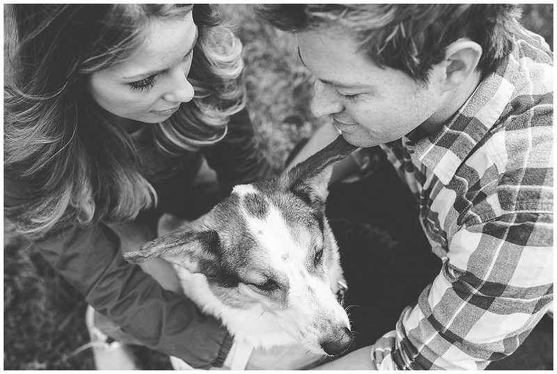 pet-dog-family-home-photographer_0830.jpg