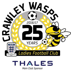 crawley wasps ladies
