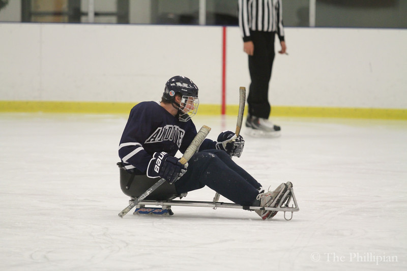 Sled Hockey Charity Game