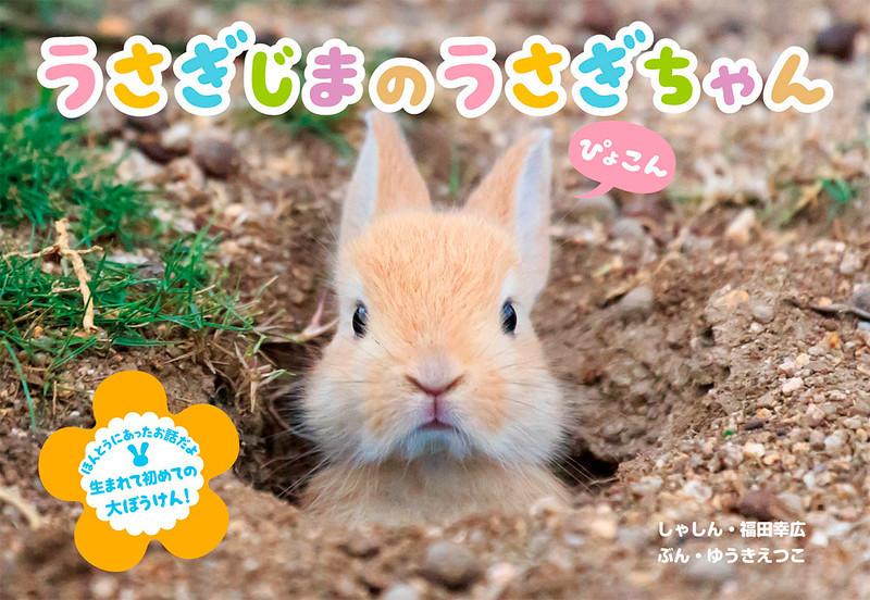 うさぎ表紙WEB.jpg