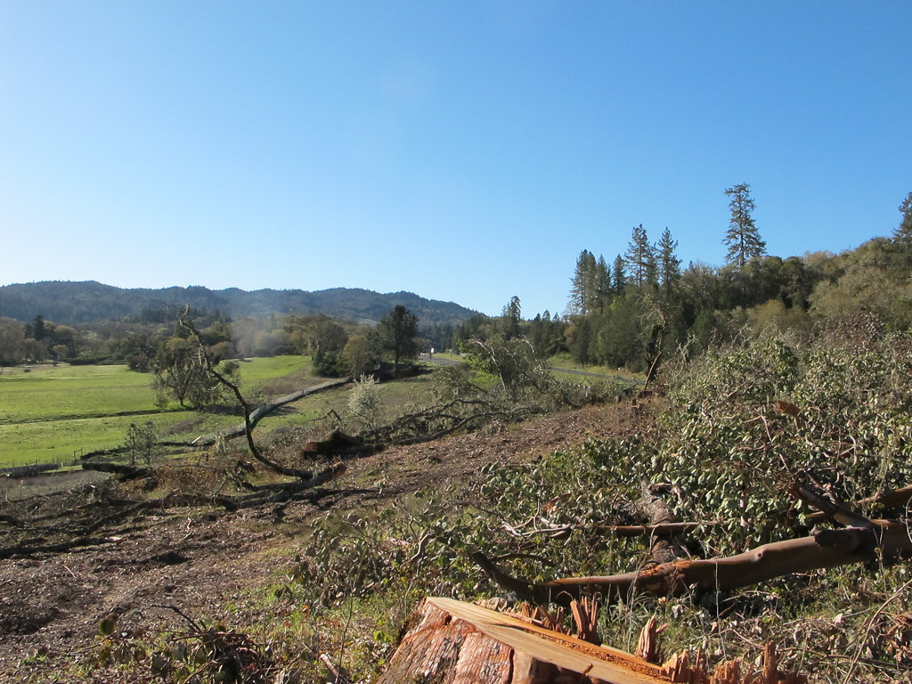 . Looking south toward where the bypass will join the existing Highway 101. You can see the fencing in the distance.