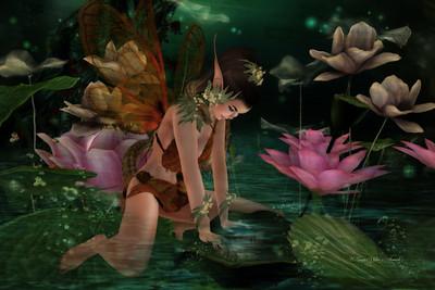 Fairy Dreams & Flibbertigibbet