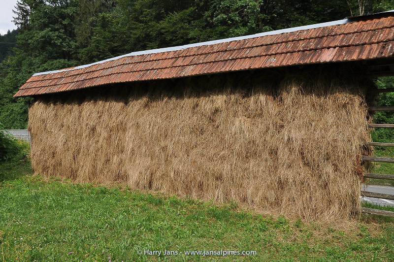 traditional drying frames in Slovenia