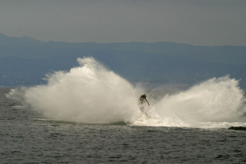 Humpback Whale Monterey CA 256_5683 FINAL 2.jpg