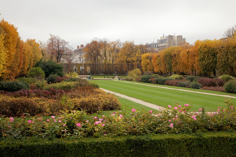 Paris Autumn Garden