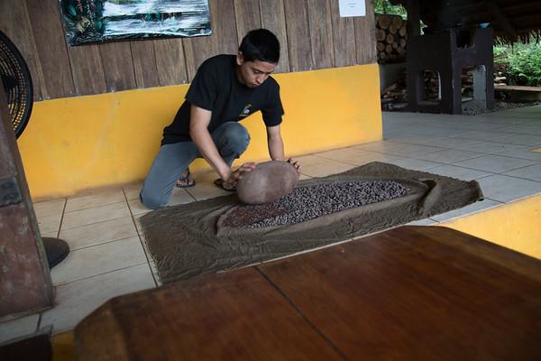 Cocorart Cacao Farm & Chocolate Factory