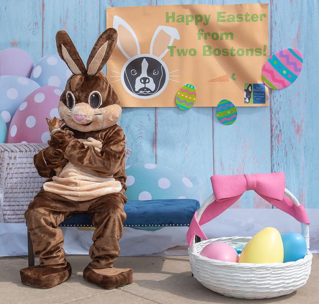 Easter2019TwoBostons-8274.jpg