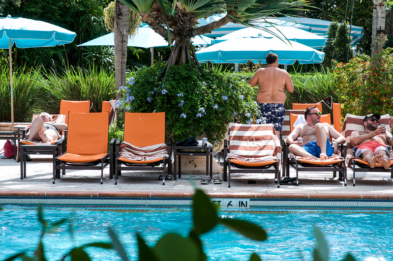 The Palms pool 4.jpg