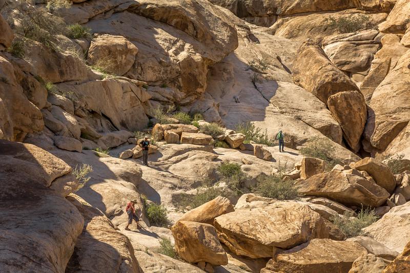 Hikers near El Camino Del Diablo #1