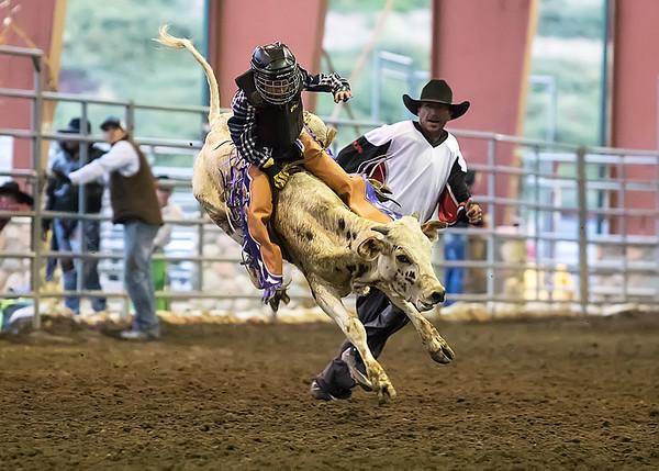 Junior Bull Riding - Norco Horseweek