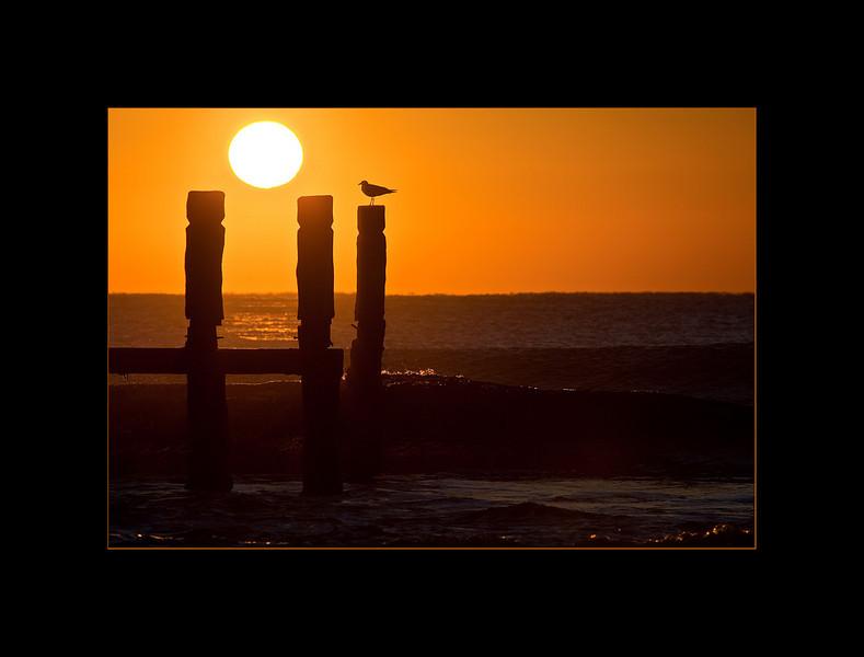 sunrise 9 small.jpg