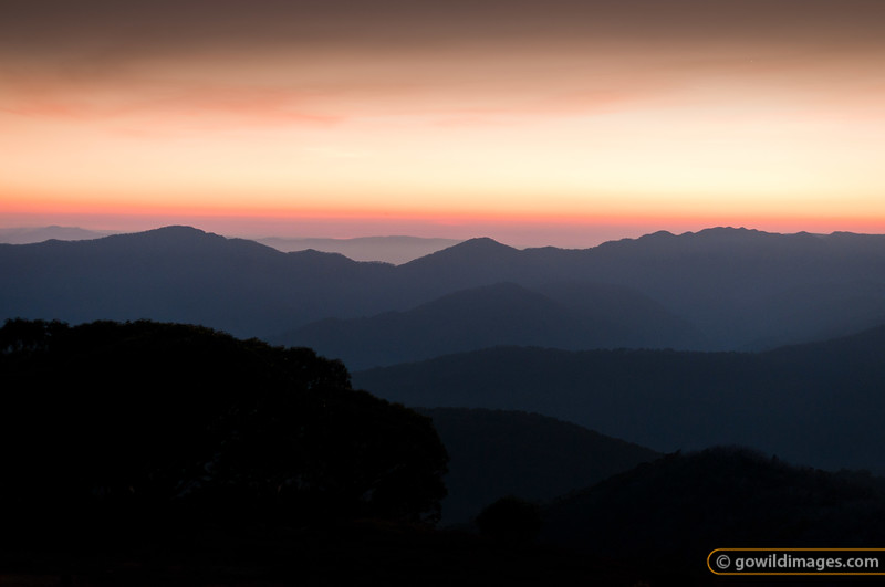 Sunrise over Mt Speculation, Mt Buggery and Crosscut Saw from Mt Stirling. The planet Mercury is visible over the Crosscut Saw (in a larger version of this image)
