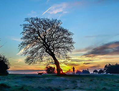 Landscapes Dawn