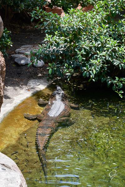 Biopark 300616W-91.jpg