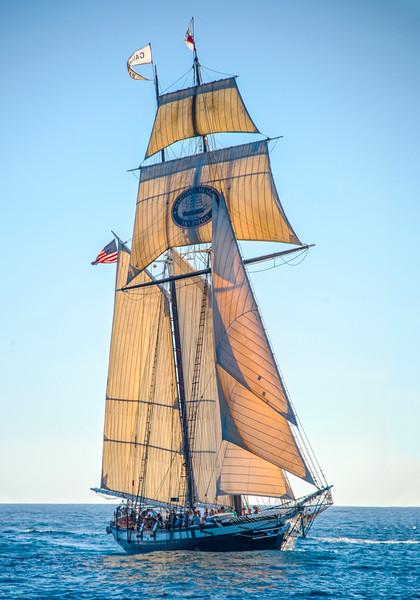 Tall Ships_Californian-2.jpg
