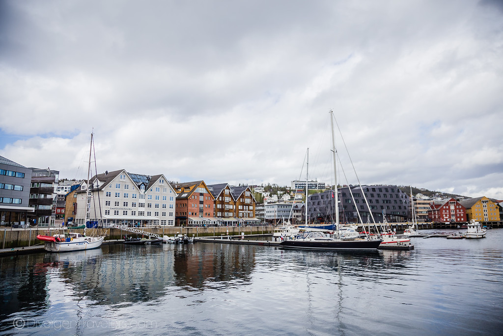 Where to eat in Tromso - Lina Stock