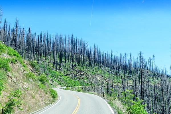 Yosemite Roads