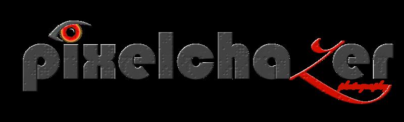 Pixelchazer Logo Red.png