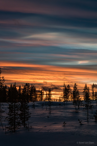 Polar Stratospheric Clouds and the Sunset
