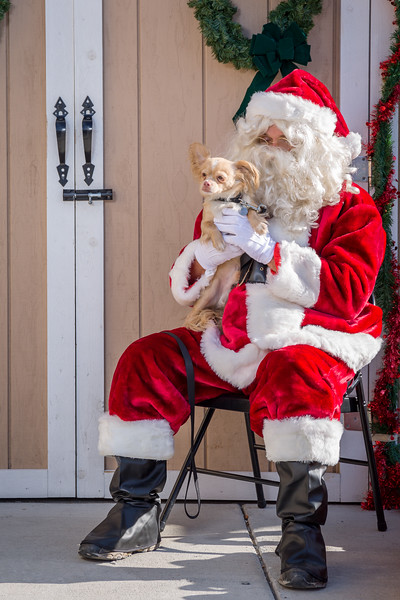 Pet Pictures With Santa-67.jpg
