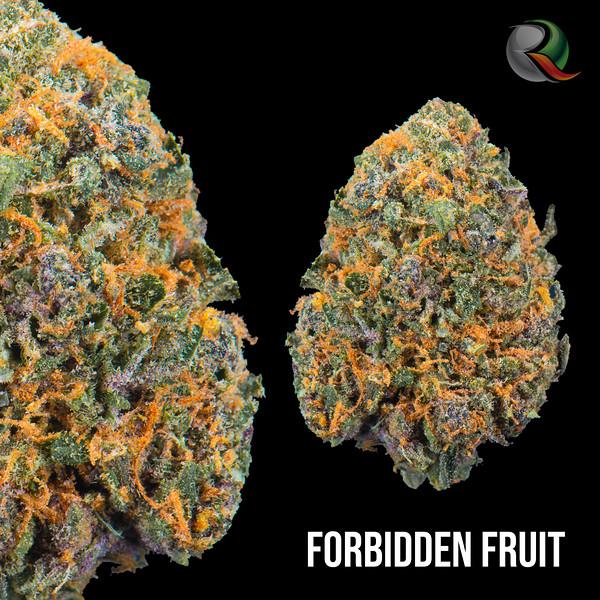 Forbidden Fruit.jpg