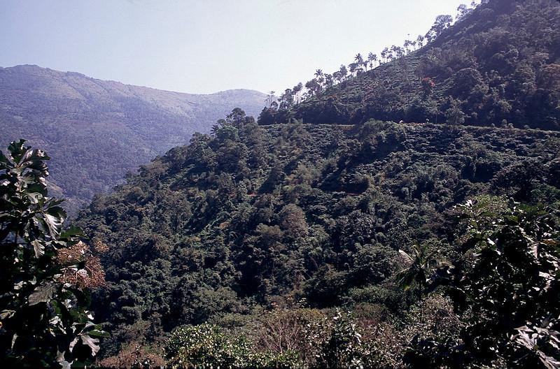India2_044.jpg