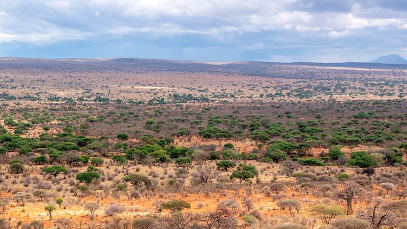 Tanzania-Tarangire-National-Park-Lemala-Mpingo-Ridge-39.jpg