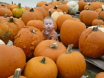 10-09 - Pumpkin! - Smyrna, GA