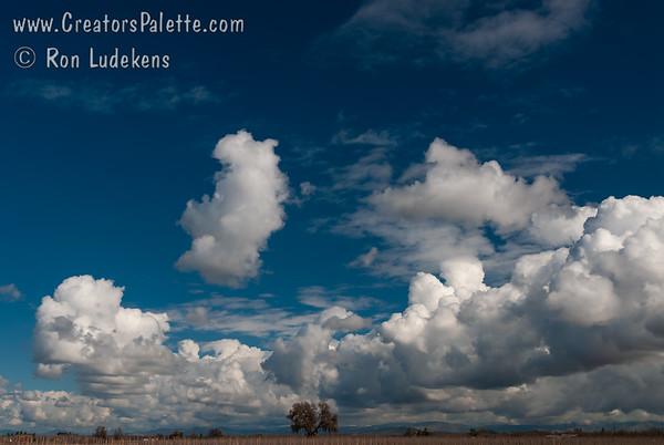 Clouds - Just Clouds