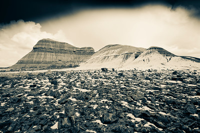 Petrified wood scraps and a snowy butte. Arizona.