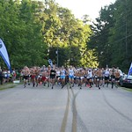 2019 Peavine Falls Run - Start/Finish