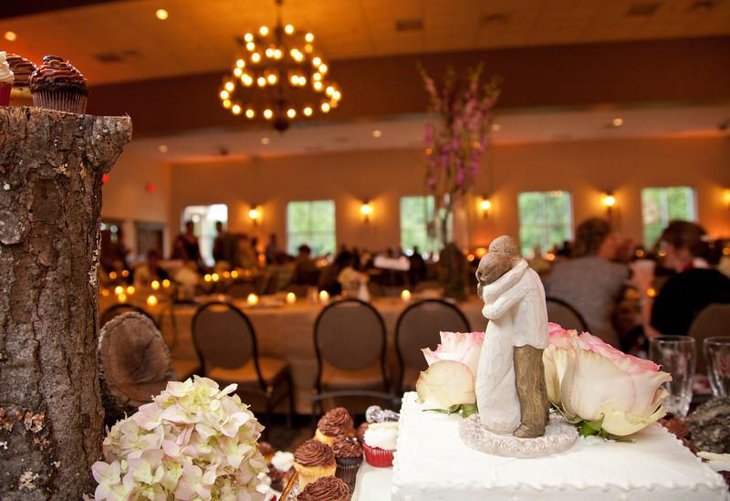 Cake Bride and Groom looking over wedding.jpg