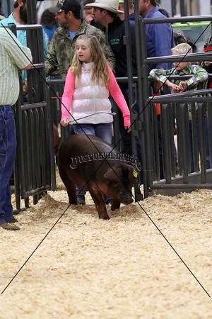 Swine I