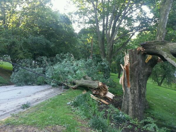. Radnor Twp Spruce Tree Rd. Big tree snapped pole n transformer. Photo via twitter- @RadnorTownship