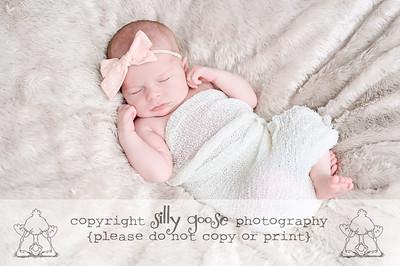 Baby Sydney and Company