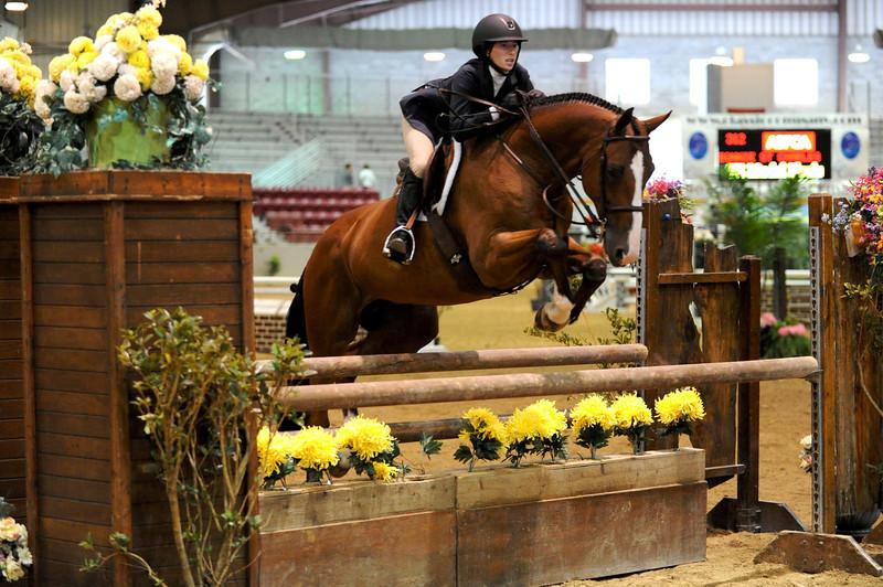 Horse show (8).jpg
