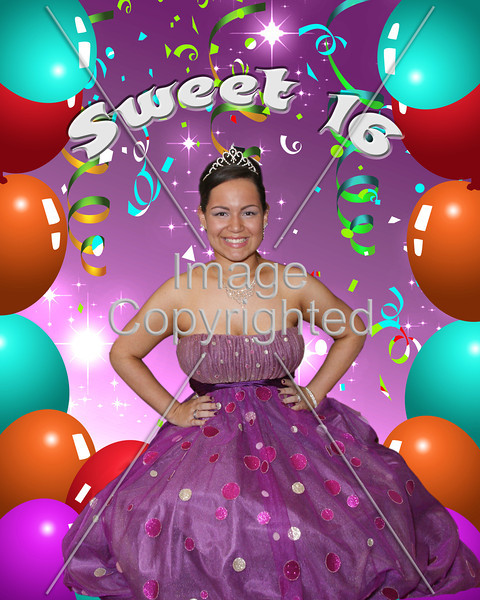 Katelyn's Sweet 16 Party