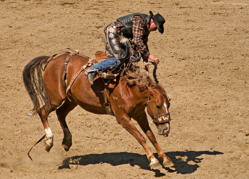 COOMBS RODEO-2009-3686A.jpg