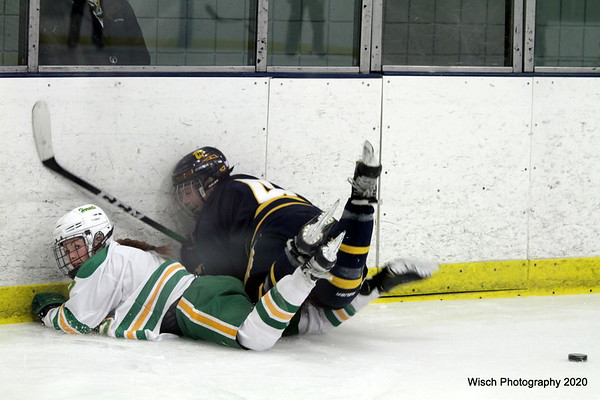 Edina v Wayzata Girls HS Hockey Sectionals 2020