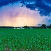 RainstormAshvillePark-009