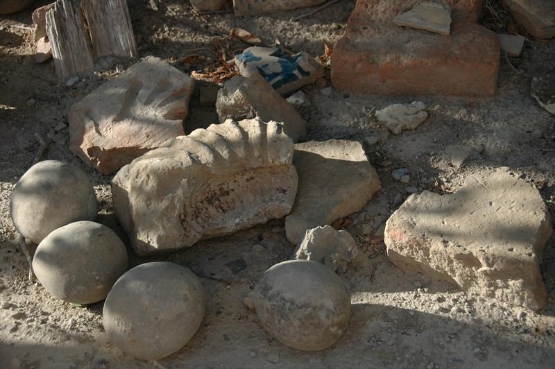 Fossils in the Desert - Murche, Turkmenistan