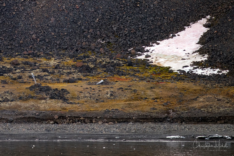 Cape Norway.jpg