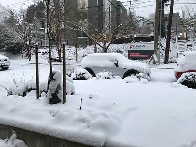 Winter - February