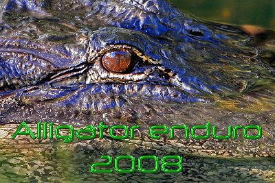 Alligator Enduro 2008