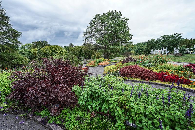 a 8 27 Arboretum-6.JPG