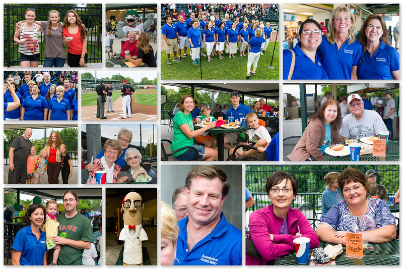 2015 ABVM Loons Collage large.jpg