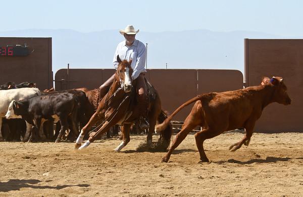 5 Novice Horse Non Pro