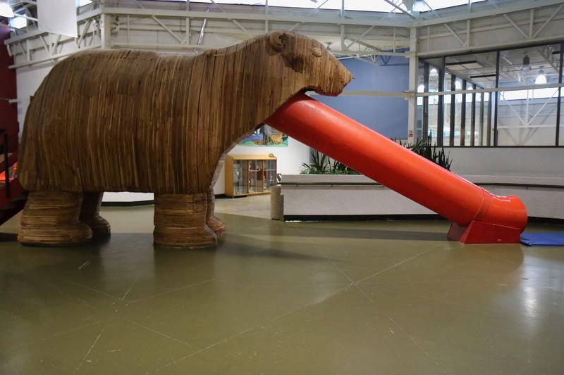 Polar bear slide in community center