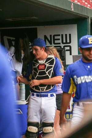 170526 Baseball at BUSCH